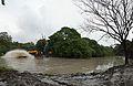 Kings Lake Dredging - Banyan Avenue - Indian Botanic Garden - Howrah 2013-10-27 3844-3847.JPG