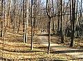 Kunraticky Forest West 2, Prague.jpg