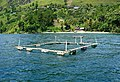 Lake Toba, North Sumatra (16).jpg