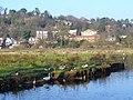 Lammas Lands - geograph.org.uk - 634425.jpg