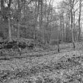 Landweer, duivelshof, wallenstelsel noord-west zijde - De Lutte - 20053363 - RCE.jpg