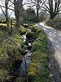 Lane at Bonehill (2) - geograph.org.uk - 1237718.jpg
