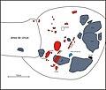 Lapa do Santo - Sepultamento 22 - Croqui Escavacao Sepultamento Vetorizado Exposicao 01.jpg