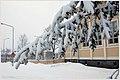 Lappenranta - winter - panoramio - Sergey Orekhov (3).jpg