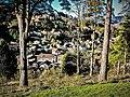 Le village, vu du Bannwehr.jpg