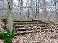 Leichlingen, die Treppe im Wald.jpg