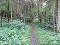 Lentvario sen., Lithuania - panoramio (24).jpg
