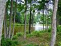Lexington Woods in Alpharetta GA - panoramio (1).jpg