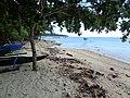 Libertad, Kaputian, Island Garden City of Samal, Davao del Norte, Philippines - panoramio (5).jpg