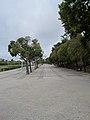 Lisbon IMG 2785 (8059845552).jpg