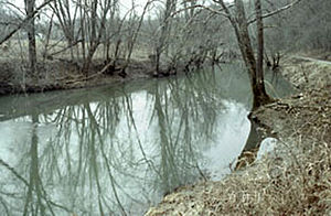 Little Muskingum River - The Little Muskingum River in the Wayne National Forest