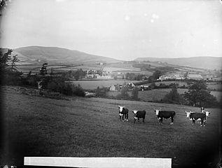 Llanbryn-mair
