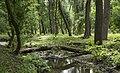 Log across Sarzhynka River.jpg