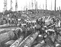Logging crew on cold deck, with hats on, including one Asian worker and one African-American worker, Walville Lumber Company, ca (KINSEY 741).jpeg