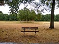 Long shot of the bench (OpenBenches 8024-1).jpg