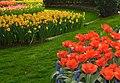 M^m Flores en el parque en la Haya - Creative Commons by gnuckx - panoramio (21).jpg
