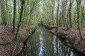 Münster, Wolbeck, Wolbecker Tiergarten, Angel -- 2014 -- 7136.jpg