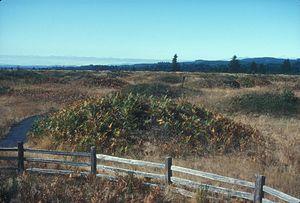 Mima mounds - Mima mounds in Washington State