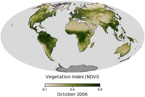 Biomes Of North America Map.Vegetation Wikipedia