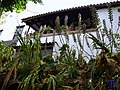 Macetas en la terraza - panoramio.jpg