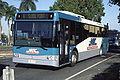 Mackay Transit Coaches Mercedes-Benz OC500LE Bustech VST.jpg