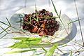 Macrobiotic Food (4783162153).jpg