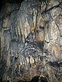 Magura cave-Пещера Магурата - panoramio (5).jpg