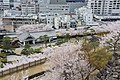 Maizurujo Park and cherry blossoms - panoramio.jpg