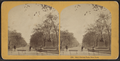 Mall, Central Park, New York, by Kilburn Brothers.png