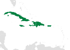 Greater Antilles - Image: Map of the Caribbean Greater Antilles