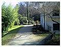 March Botanischer Garten Freiburg - Master Seasons Rhine Valley Photography - panoramio (24).jpg