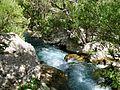Margoon river (3415302794).jpg
