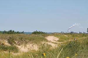 Marquette Park (Gary) - Dunes along Lake Michigan shoreline