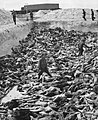 Mass Grave 3 at Bergen-Belsen concentration camp.jpg