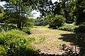 Meadow near Le Mont Des Louannes, Jersey.jpg