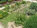 Medieval garden (Perugia) 21.jpg
