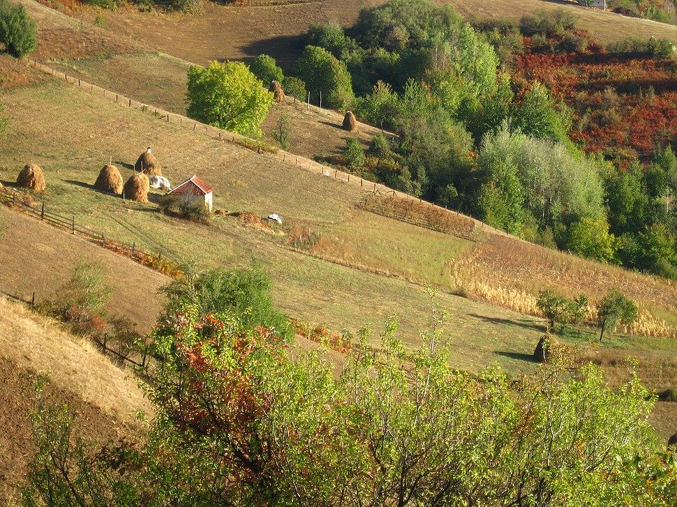 Medvednik - zapadna Srbija - mesto Rebelj - Jesenji detalj 1