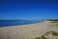 Meia Praia Lagos DSC07113.jpg