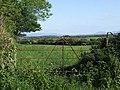 Metal gate into a field - geograph.org.uk - 186685.jpg
