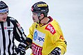 Michael Schiechl 2013-11-03.jpg
