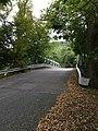 Milford Road Bridge over Lehigh Valley Railroad-aka Home.jpg