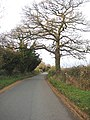 Mill Lane, Colwall - geograph.org.uk - 1055182.jpg