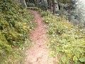 Miran Jani Track Extreme View - panoramio.jpg