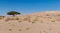 Mitzpe Ramon DSC 7965 (15453206381).jpg