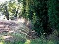 Moat - geograph.org.uk - 235447.jpg
