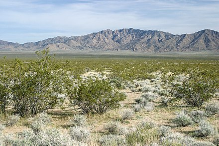 The Mojave Desert covers much of the Southwestern United States Mojave vista.jpg