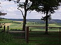 Monarch's Way towards Coombe - geograph.org.uk - 1394245.jpg