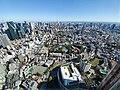 Mori Art Museum Tokyo, Japan 07 view from museum.jpg