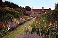 Mottistone Manor Garden, Isle of Wight - geograph.org.uk - 57709.jpg
