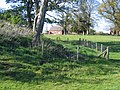Mound and Parish Room at Coddington - geograph.org.uk - 414538.jpg